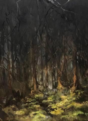 Bilde av I skogen et sted av Hilde Grønstad Sunde